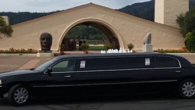 Photo of Different Types of Fantastic Limousine to choose from
