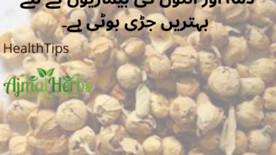 Photo of Vegetable Rennet (پنیر ڈوڈی) for Asthma and Intestinal diseases