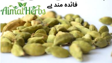 Photo of CARDAMOM (الا ئچی) benefits for asthma,bronchitis, kidney stones.