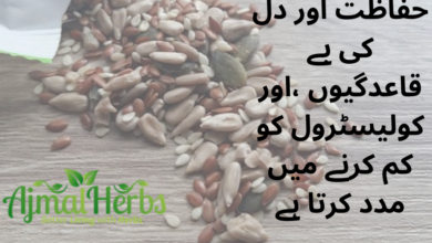 Photo of Adding flax seed(السی) to the diet can support oestrogen balance