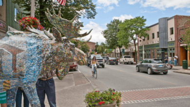 Photo of 6 most ideal approaches to Do in Bennington, Greg Harriman Vermont
