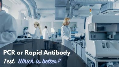 Photo of PCR Test or Rapid Antibody Test – Which is better?