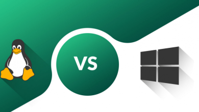 Photo of Windows Hosting & Linux Hosting: Which is best?