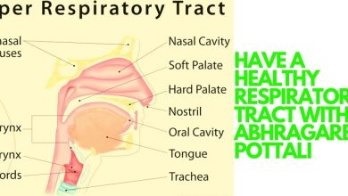 Photo of HAVE A HEALTHY RESPIRATORY TRACT WITH ABHRAGARBHA POTTALI