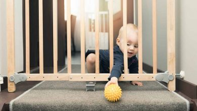 Photo of Importance of Baby Gates around the Home