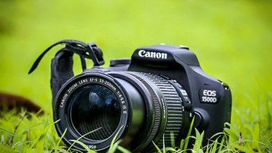 Photo of Best Dslr Camera for Video under 600 Dollars