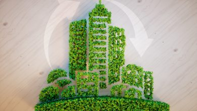 Photo of How to Be More Sustainable: The Ultimate Guide