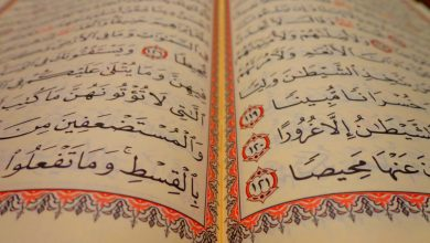 Photo of Tips To Learn Quran In A Busy Routine