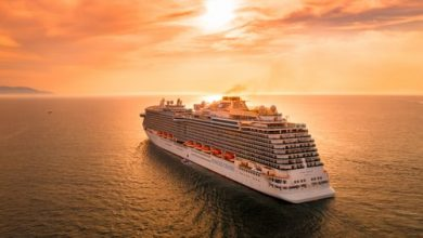 cruise tour guides