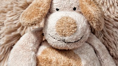 stuffed animals and plush toys